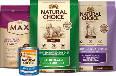 Best Natural Dog Food >> Is An All Natural Food The Best Thing To Feed Your Dog