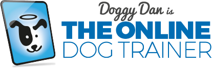 Online Dog Training Courses