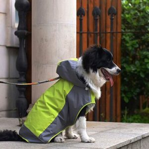 iPet Hooded Rain Coat for Medium to Large Dog