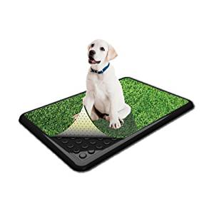 PoochPad Indoor Turf Dog Potty Classic for Dog